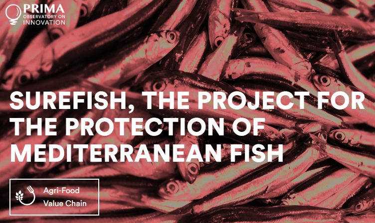 SUREFISH project is on the PRIMA POI!