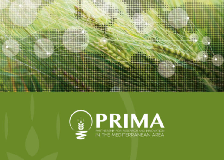 PRIMA Booklet  – Funded projects 2019